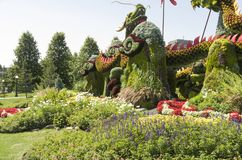 From Beijing: Blessing of the Good Omen Dragons. MosaïCanada 150, Gatineau Quebec Canada August 24, 2017: A celebration of Canada`s 150 years of stock images
