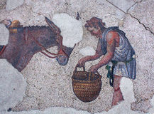 Mosaic from the Byzantine period in Istanbul. Man feeding donkey - ancient mosaic from the Byzantine period in the Great Palace Mosaic Museum in Istanbul, Turkey Stock Images