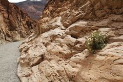 Mosaic canyon, Death Valley Stock Photography