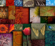 Mosaic Earth Tone Nature Rough Patterns Stock Image