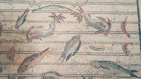 Ancient mosaic of fish and sea reptiles on the walls of the Bardo Museum in Tunisia vector illustration