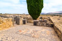 Free Mosaic Floor At The Ruins Of Volubilis, Ancient Roman City In Morocco Royalty Free Stock Photo - 151863155