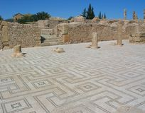 Mosaic floor of the palaestra in Sufetula. Tunisia. Ancient Sufetula (present day Sbeitla). The public baths - the palestra with mosaic covering a large part of Stock Images