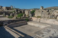 Mosaic floor, Volubilis ruins, the excavations of the roman city Royalty Free Stock Images