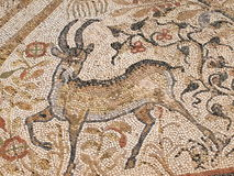 Mosaic, Heraclea Lyncestis, Macedonia Stock Photos
