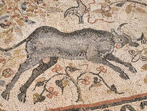 Mosaic, Heraclea Lyncestis, Macedonia Royalty Free Stock Photography