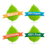 Mosaic Leaf Labels. Vector illustration of mosaic leaf label design elements Royalty Free Stock Photos