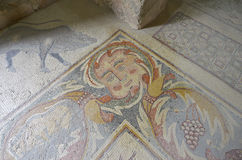 Mosaic, Madaba, Jordan. Ancient mosaic in Madaba, Jordan Royalty Free Stock Image