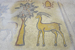 Mosaic in Madaba, Jordan. Ancient mosaics in Madaba, Jordan Stock Image