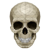 Mosaic skull Royalty Free Stock Photography