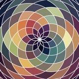 Mosaic spectrum color wheel made of geometric shapes. Rainbow co Stock Photos