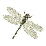 Mosaic stylized dragonfly. vector illustration