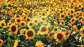 Mosaic tiles sunflowers. Colorful abstract background with mosaic sun flowers field Stock Photo