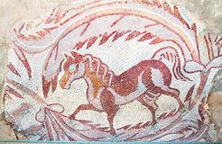 Mosaici in Madaba, Giordano del pavimento Fotografie Stock Libere da Diritti