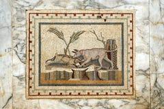 Mosaico 6 fotos de archivo