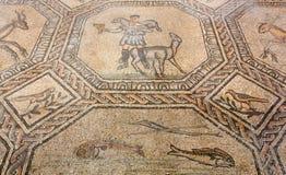 Mosaico antico del pavimento nella basilica di Aquileia fotografia stock libera da diritti