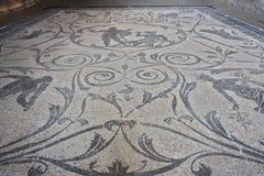 Mosaico com Hercules e Acheloo da casa de campo de Nerone em Anzio fotos de stock royalty free