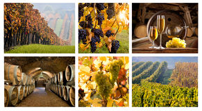 Mosaico con el vino Fotografía de archivo