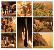 Mosaico con el vino Fotos de archivo libres de regalías