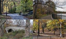 Mosaico con escenas del Central Park, Nueva York de la foto foto de archivo