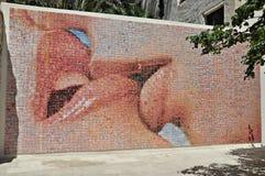 Mosaico de la foto Imagenes de archivo