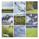 Mosaico de la primavera Foto de archivo libre de regalías