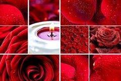 Mosaico de las rosas rojas Imágenes de archivo libres de regalías