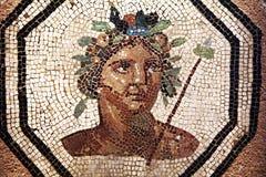 Mosaico de Lyon imagen de archivo