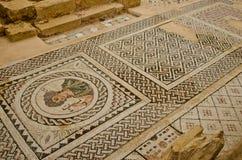 Mosaico del Cipro Fotografie Stock