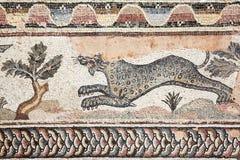 Mosaico romano del leopardo fotografia stock