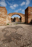 Mosaico romano, Ostia Antica, Italia Fotografia Stock Libera da Diritti