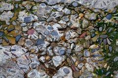 Mosaico velho da flor do seixo imagens de stock royalty free