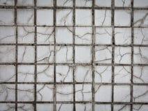 Mosaicos de la baldosa cerámica Fotos de archivo