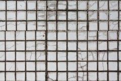 Mosaicos de la baldosa cerámica Fotografía de archivo libre de regalías