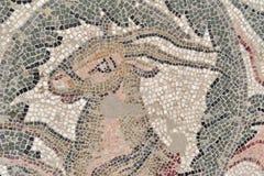 Mosaicos del chalet romano del armerina 6 de la plaza Imágenes de archivo libres de regalías