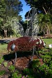 Horticultural art of bee with brown vegetation carpeting steel frame in Royal Botanic Garden in Sydney, Australia. Mosaiculture of animal in park. Plant royalty free stock images