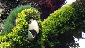 MOSAICULTURES-INTERNATIONAL 2013 i Montreal, Quebec, Kanada, Montreal tillträde: Fågelträdet royaltyfri bild