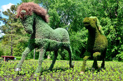 MOSAICULTURES INTERNATIONAL Stock Images