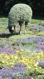 MOSAICULTURES-INTERNATIONAL 2013, MONTREAL BOTANISK TRÄDGÅRD, Quebec, Kanada, Montreal tillträde: Mannen som planterade trädfår Royaltyfri Bild