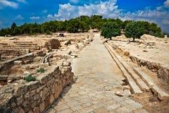 Mosaik i Zippori Arkivfoton