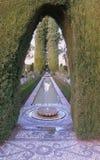 Mosaik-Weg durch die gewölbte Hecke Stockbild