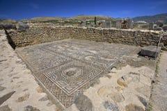 mosaiken fördärvar volubilis Royaltyfri Bild