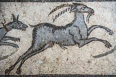 Mosaiker från Helicarnassus exibited i brittiska Miseum Fotografering för Bildbyråer