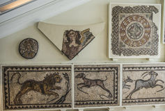 Mosaiker från Helicarnassus exibited i brittiska Miseum Arkivbild