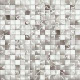 mosaiktegelplatta Arkivfoto
