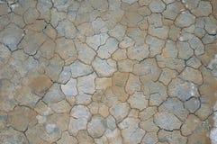 Mosaique Stock Foto