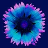 Mosaisk bakgrund - blomma Lilablått blommar på ett mörker - blå bakgrund också vektor för coreldrawillustration vektor illustrationer