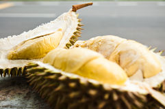 Mosang King Durian Fruit Stock Photography