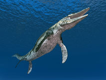 Mosasaur Tylosaurus Stock Photo