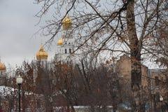 moscú el caminar al invierno de Moscú Fotografía de archivo